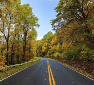Fall Road Background Image